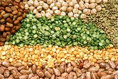 Pode submeter propostas pesquisadores de universidades, instituições de pesquisa ou empresas que trabalhem com Ciência dos Alimentos (foto: CSIRO/Wikimedia)